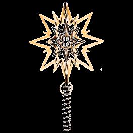 Topstjernemediumgold-20