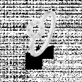 Wheelringslv-20