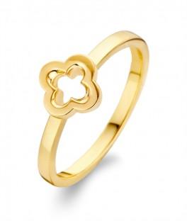 Diva ring forgyldt-20