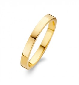 Raw Polished ring forgyldt-20